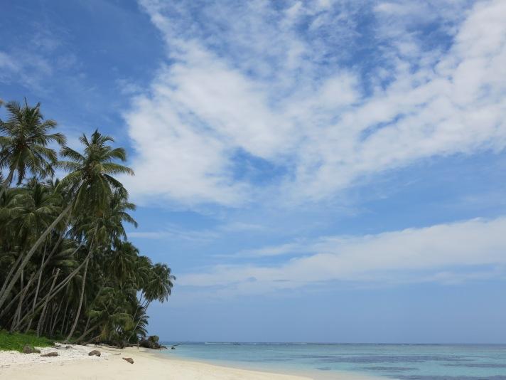 Tailana
