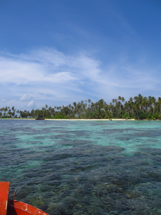 Hamparan terumbu karang (dok. Jenni)