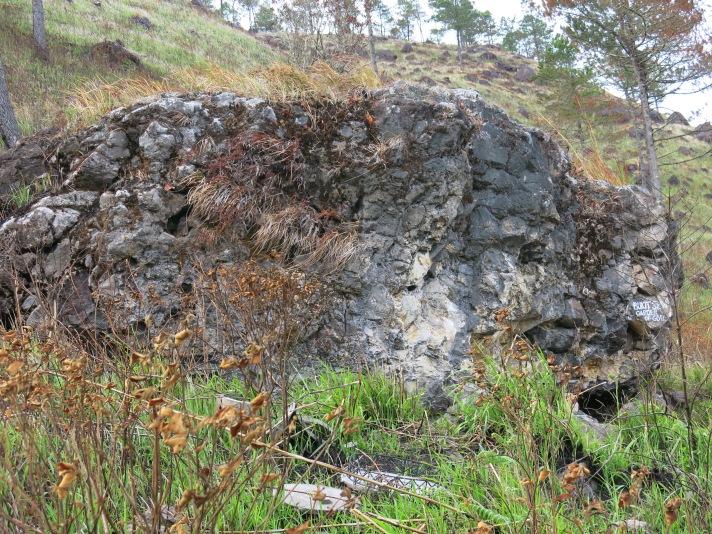 Batu Garden of Sion